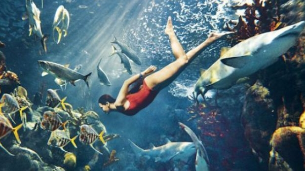 Rihanna plastic surgery  3 swimming with sharks