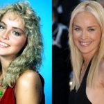 Sharon Stone before and after plastic surgery (35)