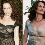 Andie Macdowell before and after plastic surgery 25