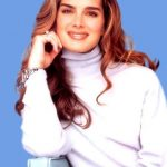 Brooke Shields plastic surgery 29