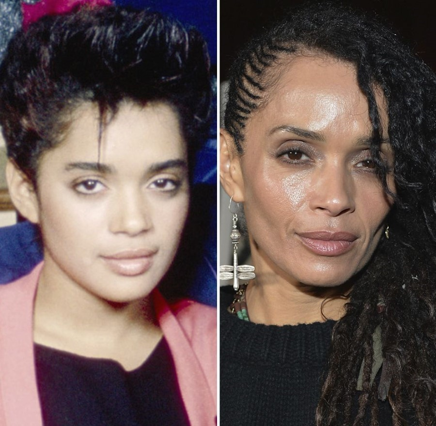 Lisa Bonet Before And After Plastic Surgery 32