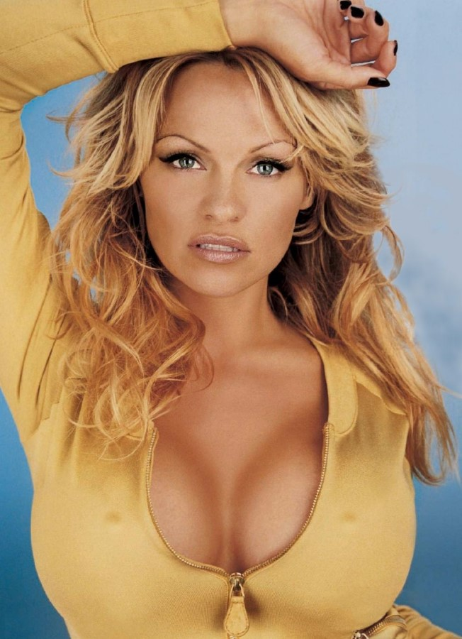 Crystal Hefner  Pamela Anderson  and More Stars Who Had Their     Stars Plastic Surgery   Celebrities Plastic Surgeries Reviews