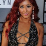 Snooki before plastic surgery breast augmentation