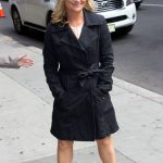 Amy Poehler plastic surgery (17)