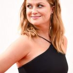 Amy Poehler plastic surgery (30)