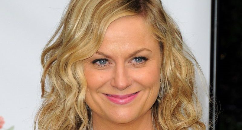 Amy Poehler plastic surgery